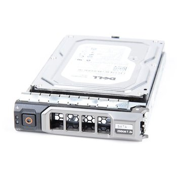 DELL SAMSUNG 250GB SATA HE253GJ 7.2K RAMKA 0GRCT2