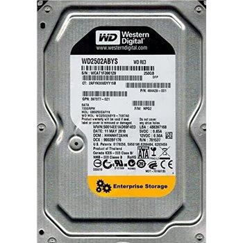 DYSK WESTERN DIGITAL 250GB 7.2K 3.5 WD2502ABYS